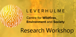 Leverhulme Wildfires Research Workshop: Fire in the Tropics (23 Jan 2020)