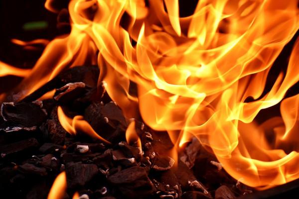 The Science of a Bushfire (14 Jan 2020)