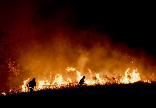 Climate change increases the risk of wildfires confirms new review (14 Jan 2020)