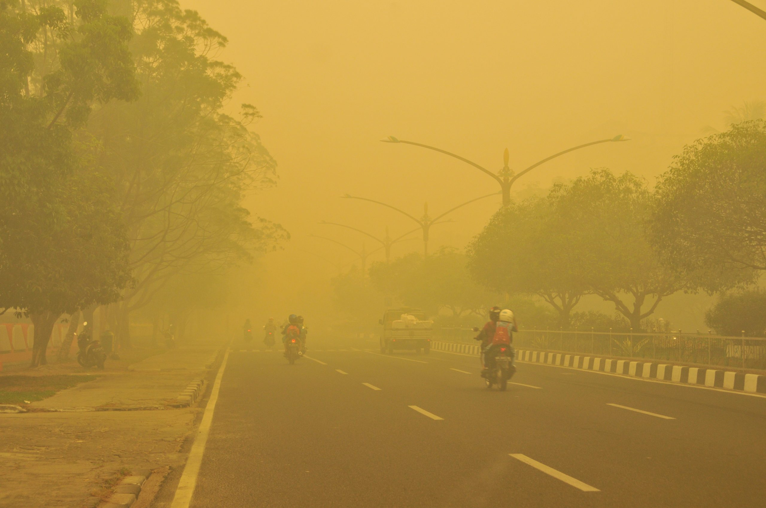 Landscape fires estimated to cause over 600 thousand premature deaths each year, many in children under five