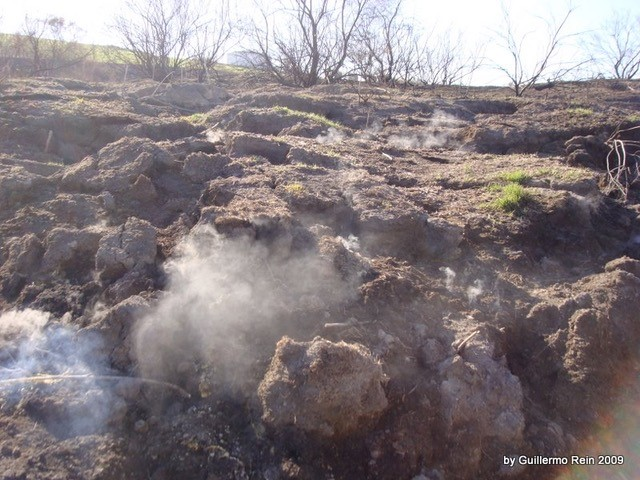 Spontaneous ignition of smouldering peat fires (and how to simulate them in the field)