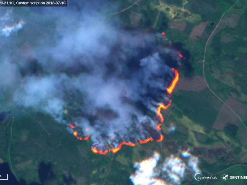KCL researchers in new 10-million-euro project to tackle forest fires in Europe