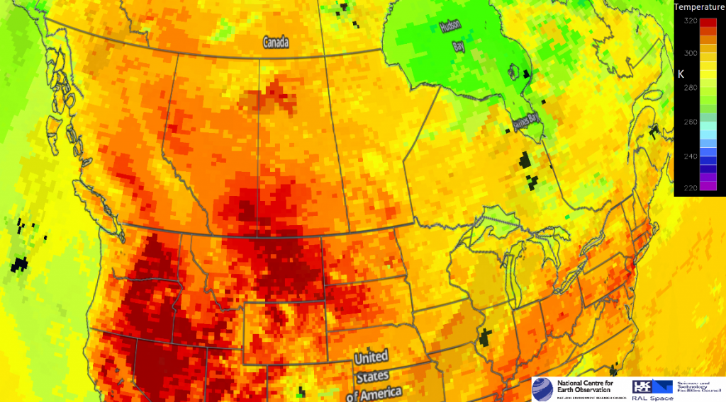 NCEO Researchers track effects of the devastating Western North America heatwave